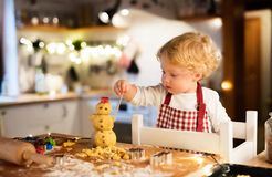 Toddler boy making gingerbread cookies at home. Stock Image