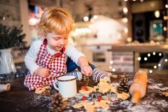 Toddler boy making gingerbread cookies at home. Stock Photos