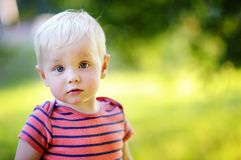 Toddler boy. Outdoor portrait of toddler boy Royalty Free Stock Images
