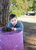 Toddler boy with a pine cone Stock Photography