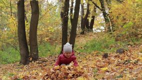 Toddler boy playing with autumn leaves in park stock video