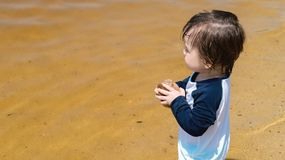 Toddler boy playing in a lake on a summer day Stock Photos