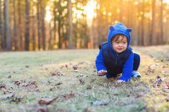 Toddler boy playing outside in autumn royalty free stock photography