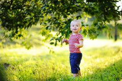 Toddler boy playing with soap bubbles Royalty Free Stock Photography