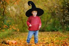 Toddler boy in pointed hat playing with magic wand outdoors Stock Photo