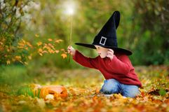 Toddler boy in pointed hat playing with magic wand outdoors. Little wizard. Halloween concept Royalty Free Stock Image