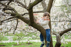 Toddler boy in spring time near the blossom tree. Portrait of smiling father giving his son piggyback ride outdoors against spring or summer forest or park royalty free stock photo