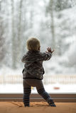 Toddler boy standing up against a window looking out Stock Images