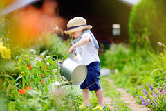 Toddler boy in straw hat watering plants in the garden Royalty Free Stock Photo