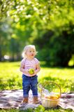 Toddler boy in sunny park Royalty Free Stock Photography
