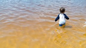 Toddler boy swimming on a summer day Royalty Free Stock Photo