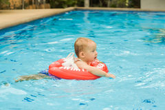 Toddler Boy swims in the pool Royalty Free Stock Photo