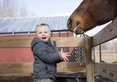 Toddler Boy Visiting a Local Urban Farm and Feeding the Horses w Stock Photos