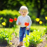Toddler boy walking in the garden Royalty Free Stock Images