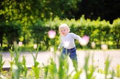 Toddler boy walking in the garden Royalty Free Stock Photo