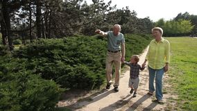 Toddler boy walking with his grandparents in park
