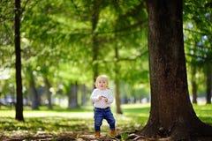 Toddler boy walking in the park Royalty Free Stock Photos