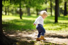 Toddler boy walking in the park Royalty Free Stock Photography
