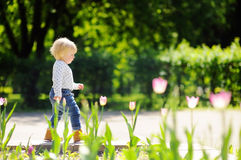 Toddler boy walking in the park Stock Images