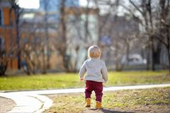 Toddler boy walking at the warm spring day Stock Images