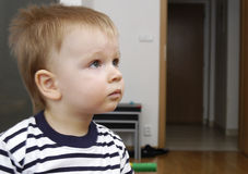Toddler boy watches TV Royalty Free Stock Photo