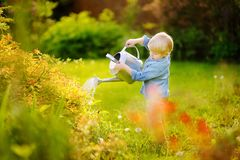 Free Toddler Boy Watering Plants In The Garden At Summer Sunny Day Stock Images - 106303584