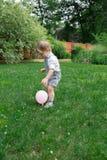 Toddler boy Royalty Free Stock Photos
