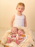Toddler brother with newborn siblings Stock Photography