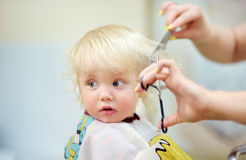 Toddler child getting his first haircut Stock Image