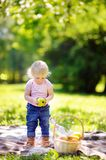 Toddler child having a picnic Stock Images