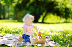 Toddler child having a picnic in park Royalty Free Stock Photos