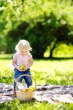 Toddler child having a picnic in park Royalty Free Stock Photography