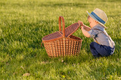 Toddler child outdoors. One year old baby boy wearing straw hat looking in picnic basket Royalty Free Stock Image