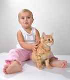 Toddler child plays with a cat Stock Images