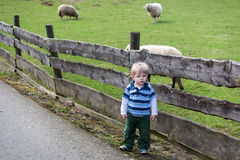 Toddler child standing in front of a wooden fence Stock Photo