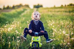 Toddler child in a summer dandelion field feels free and happy