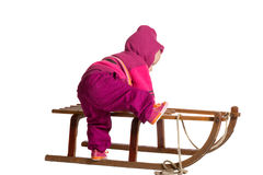 Toddler clambering onto a sled Stock Photography