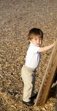 Toddler climbing Stock Photography