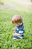 Toddler crawling in the garden and exploring backyard Stock Photo