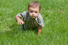 Toddler crawling in the grass Stock Images