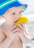 Toddler cute boy eating boiled corn Royalty Free Stock Image