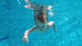 Toddler diving under water in the swimming pool. Happy baby boy diving under the water in the swimming pool. An underwater shot stock footage