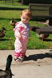 Toddler and duck have a stare down Stock Photo