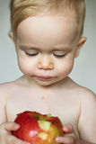 Toddler Eating Apple. Image of cute toddler eating an apple stock photo