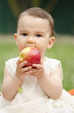 Toddler eating an apple. An healthy child eating an healthy apple Royalty Free Stock Photography