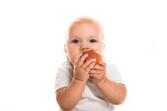 Toddler eating an apple on a white background royalty free stock photography