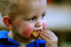 Toddler eating a cookie. Close-up of two year old boy with a chocolate chip cookie in his mouth and crumbs on his face Stock Photo