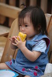 Toddler eating corn on the cob. Toddler eating a juicy corn on a summer day royalty free stock images