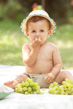 Toddler eating grapes Stock Photography