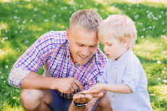Toddler exploring a dragonfly which was caught by his father Stock Photography